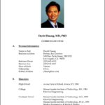 Professional Resume Format Doc