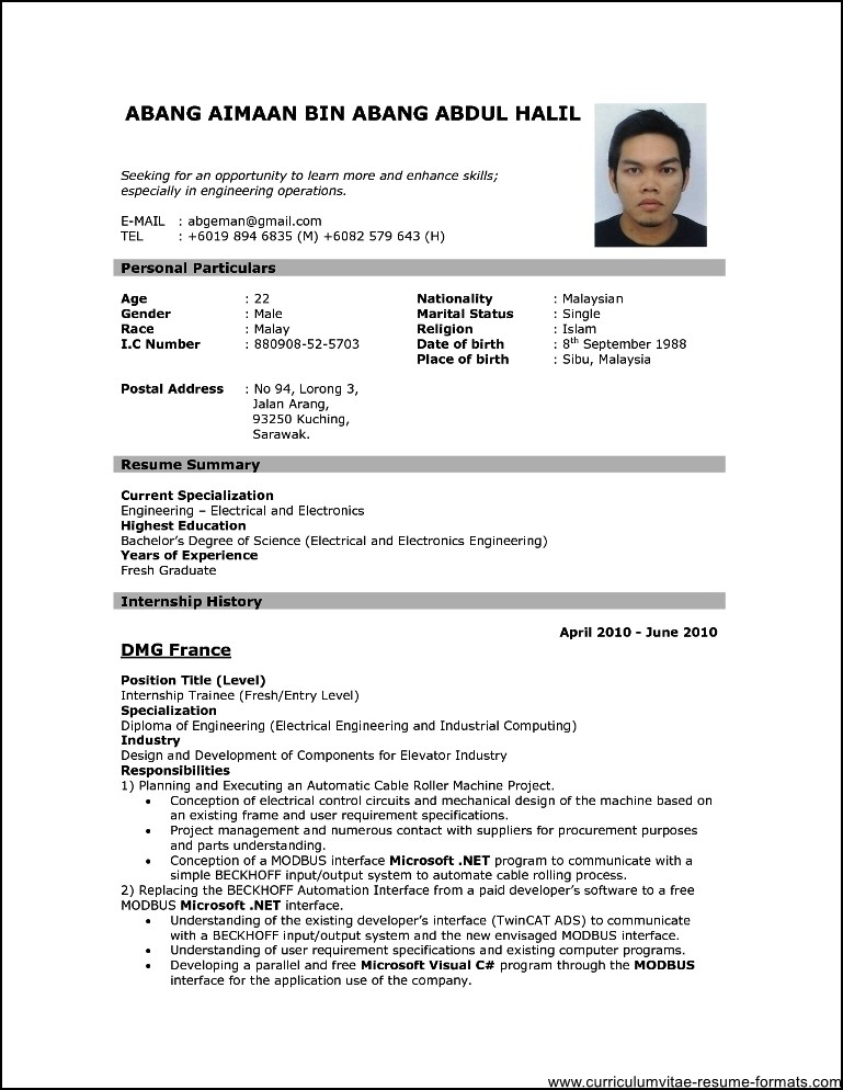 professional resume format download pdf