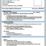 Professional Resume Format For Freshers Doc