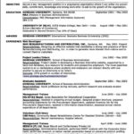 Professional Resume Template 2011