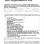 Professional Resume Template Microsoft Word 2007