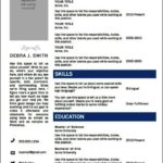 Professional Resume Template Word 2010