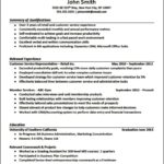 Professional Resume Templates For Experienced
