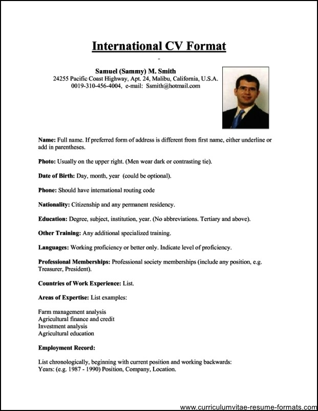 professional resume writers online