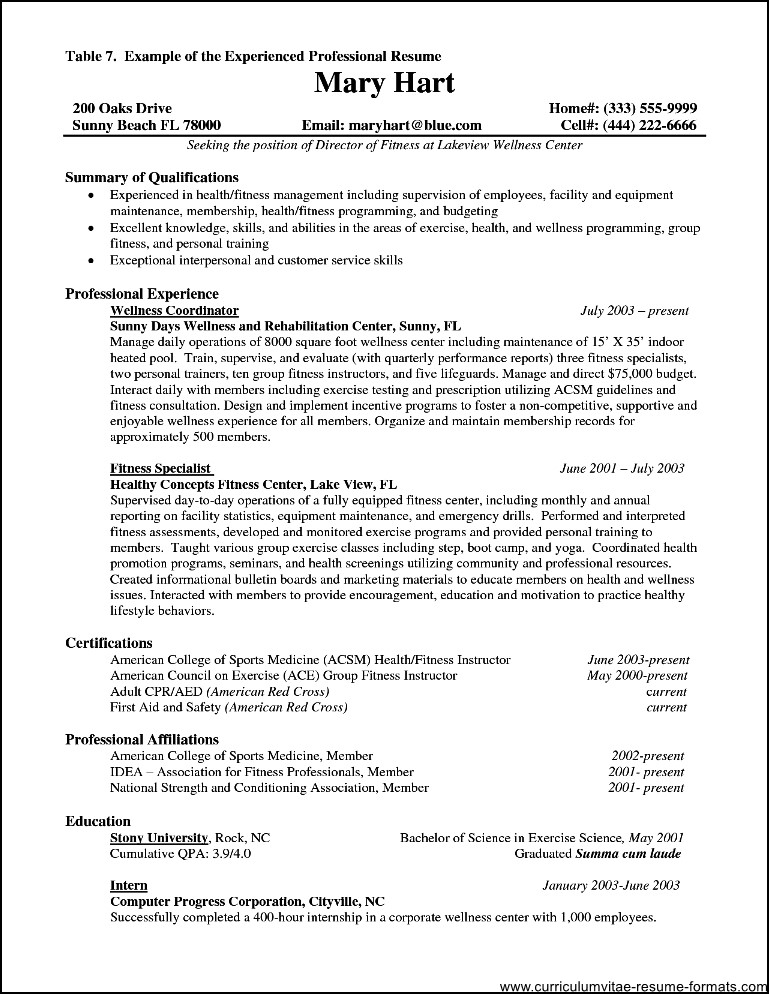 resume for it professional with experience  free samples