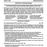 Resume For Marketing Executive With Experience