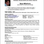 Resume Format For 2 Year Experienced It Professionals Free