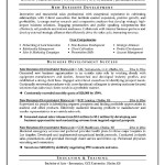 Resume Format For Business Development Executive