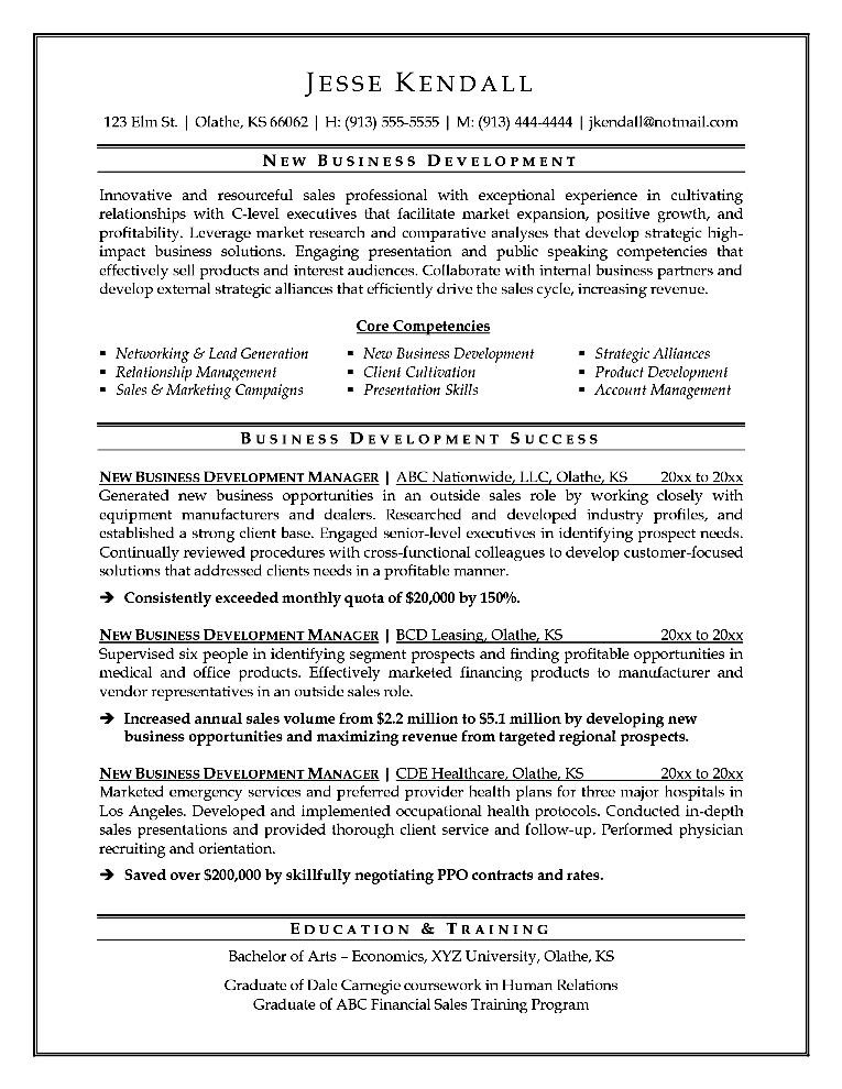 resume format for business development executive - Executive Format Resume