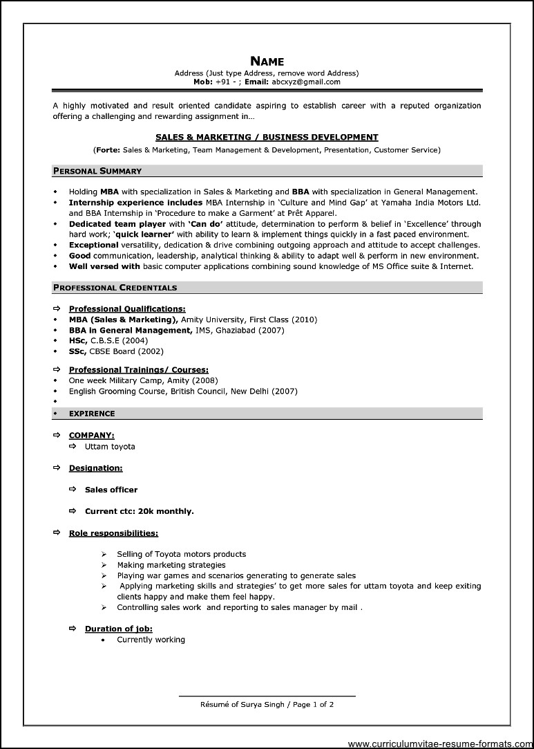 resume format for experienced it professionals