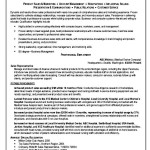 Resume Format For Fmcg Sales Executive