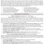 Resume Format For Sales Executive