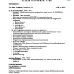 Resume Insurance Account Executive