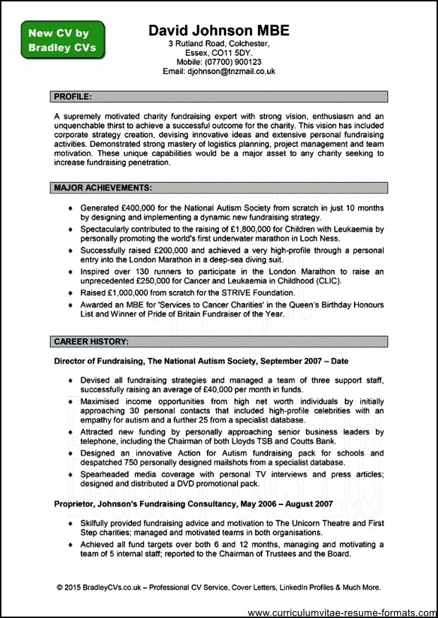 Resume professional writers coupon idealstalist resume professional writers coupon fandeluxe Images