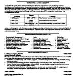 Sales Executive Resume Sample Pdf