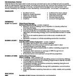 Sample Resume Brand Executive