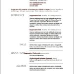 Sample Resume Modern