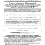 Sample Resume Operations Executive