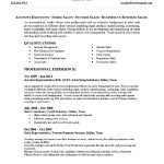 Sample Senior Account Executive Resume