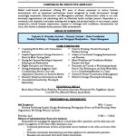 Senior Executive Assistant Resume