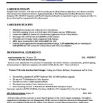 Software Sales Executive Resume