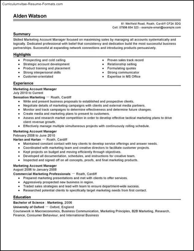 account manager resume template