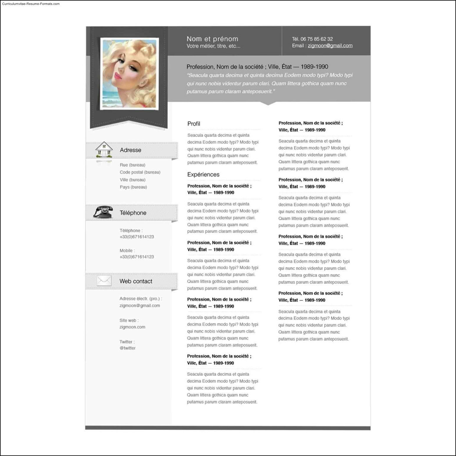 Free Samples , Examples & Format