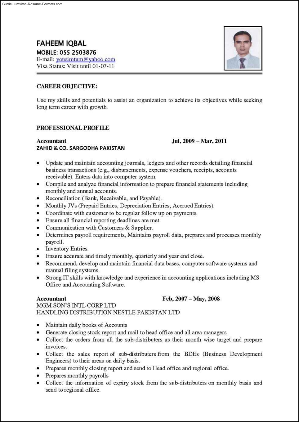 best resume template to use