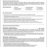 Business Development Resume Template