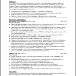 Ceo Resume Templates