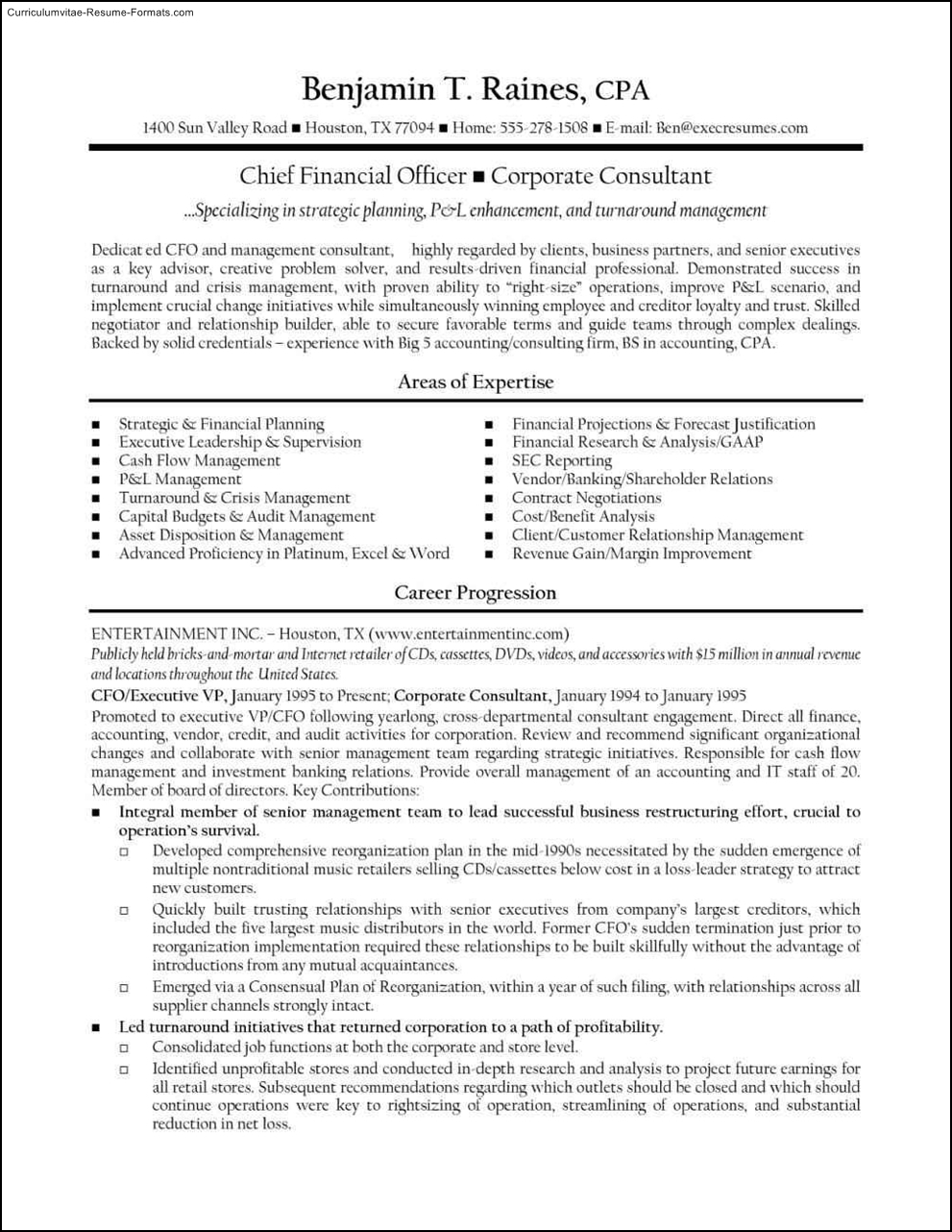 Cfo Resume Template Free Samples Examples Amp Format