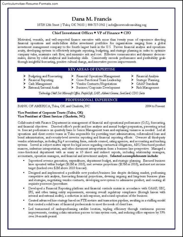 Cfo Resume Templates Free Samples Examples Amp Format