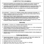Computer Programmer Resume Template