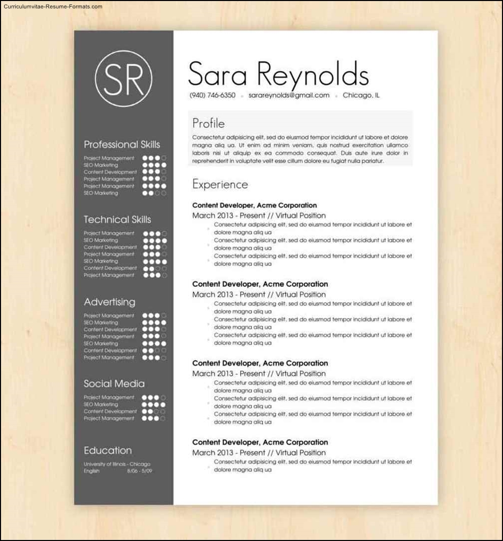 cool resumes templates