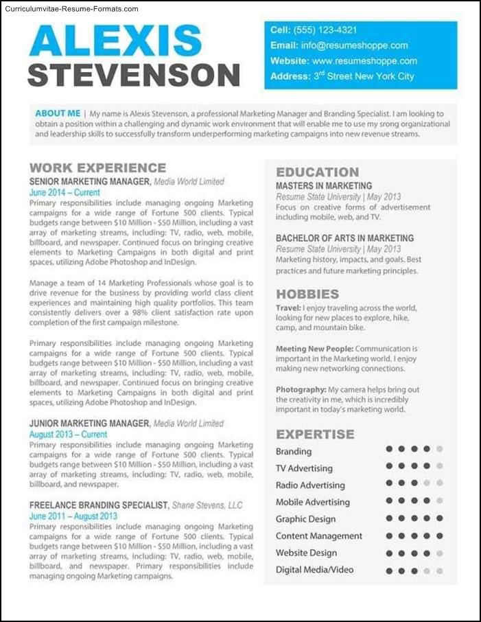 downloadable resume templates mac