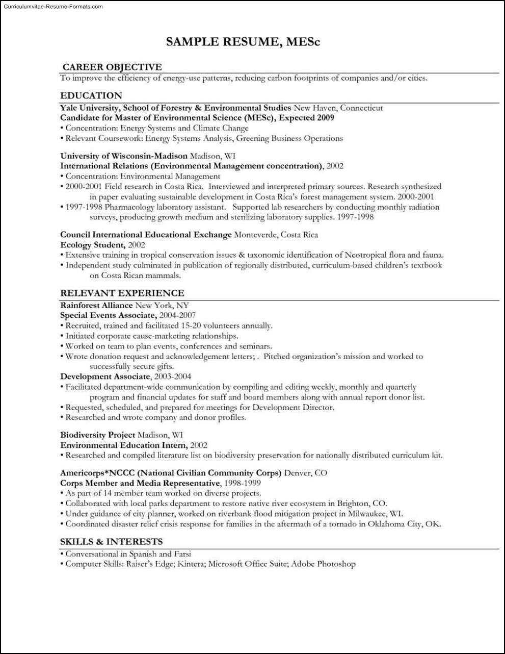 environmental resume template