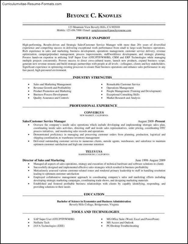 executive level resume template