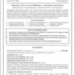 Executive Resume Format Template