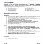 Executive Summary Resume Example Template