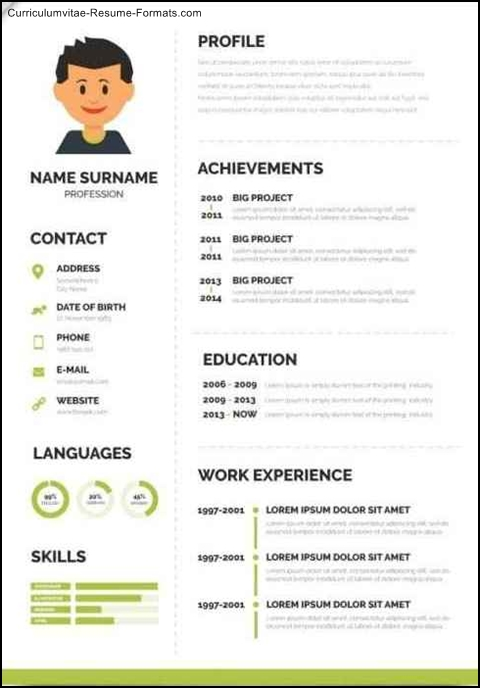 Fancy Resume Templates Free Samples Examples Amp Format