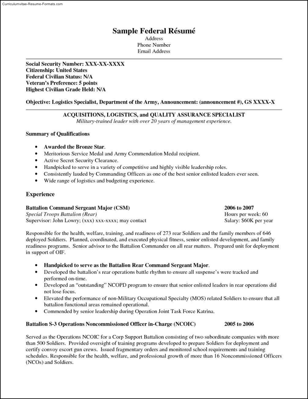 federal resume templates  free samples  examples