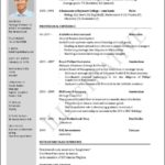 Free Downloadable Resume Templates For Word 2007