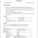 Free Resume Template Word 2010