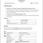 Free Resume Template Word 2010
