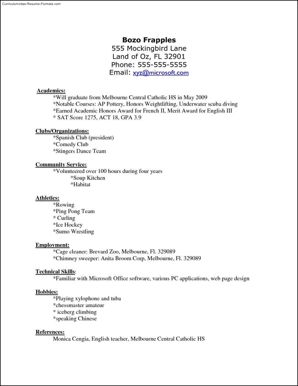 Hockey Resume Template Free Samples Examples Amp Format