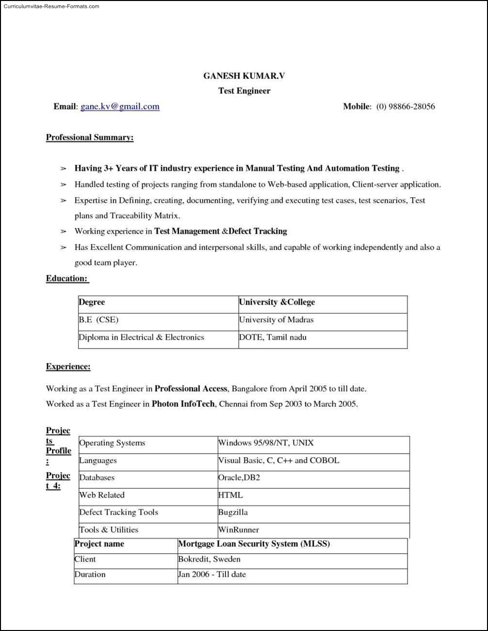 instant resume template free sles exles format