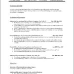 It Professional Resume Template Word