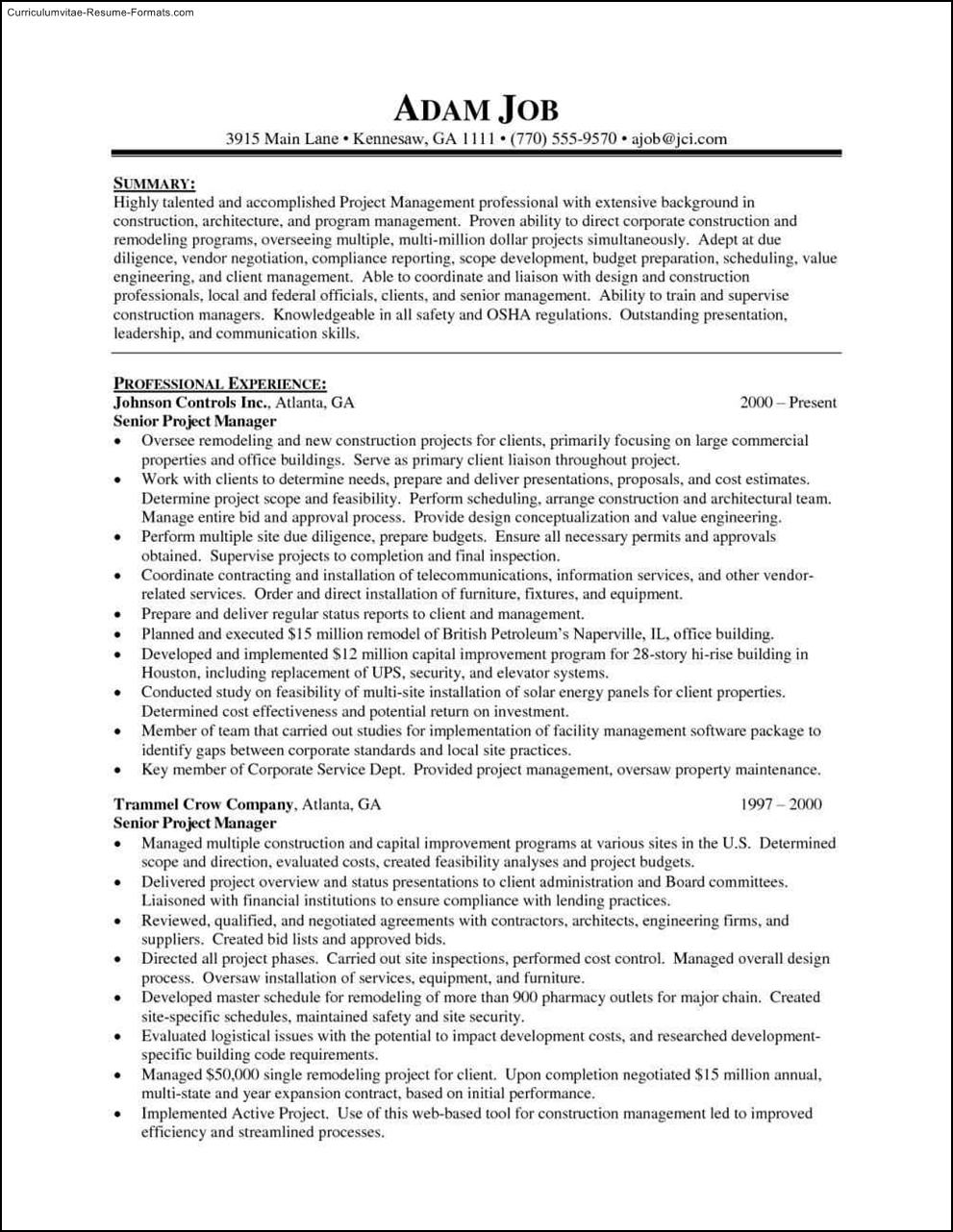 it project manager resume template  free samples