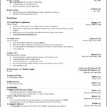 Microsoft Office Resume Templates 2010