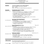 Microsoft Word Resume Templates 2013